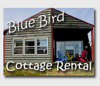 Cottage for Rent